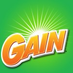 gain coupon 2013