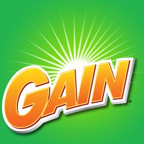 gain coupon 2013